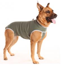 Roupa Pós-Cirúrgica para Cães ( Fêmea)